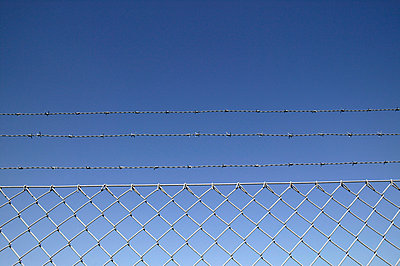 Barbed wire fence against blue sky - p388m877245 by L.B.Jeffries