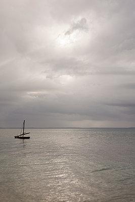 Fisching boat - p842m939618 by Renée Del Missier