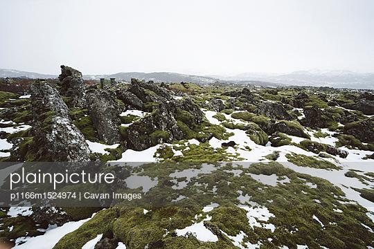 p1166m1524974 von Cavan Images