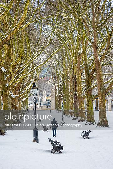 p871m2003562 von Alan Copson photography