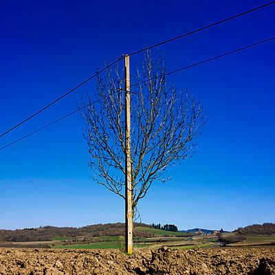 Transmission line - p813m778826 by B.Jaubert