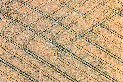 Aerial view, Grainfield with tractor tracks - p300m1113496f by Klaus Leidorf