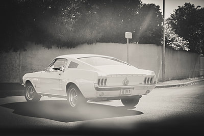 Mustang on parking area - p1150m1487308 by Elise Ortiou Campion