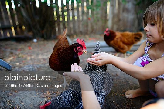 p1166m1474485 von Cavan Images