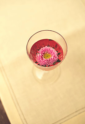 Pink Flower Floating in Glass of Blush Wine - p1617m2264280 by Barb McKinney