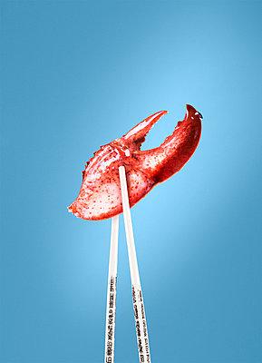 Lobster Claw Between Chopsticks - p694m720460 by Eydis Einarsdottir photography