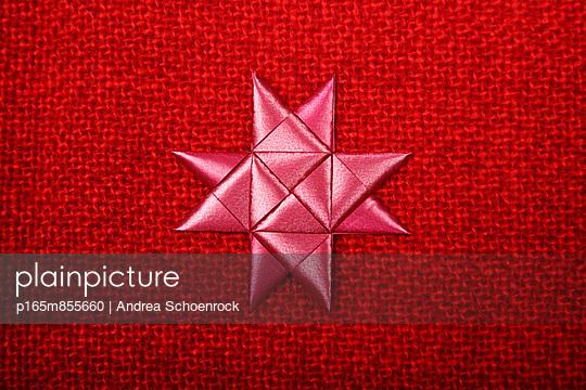Weihnachtsstern - p165m855660 von Andrea Schoenrock