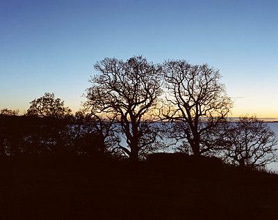 Insel Vilm - p1016m792630 von Jochen Knobloch