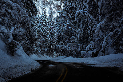 Road amidst trees covered with snow - p1166m1209715 by Cavan Images