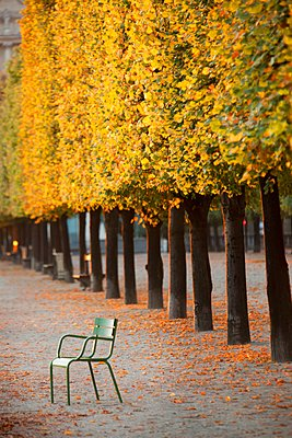 Chairs in the gardens and the grounds of the Louvre Palace complex in the centre of Paris, France - p429m1149037 by Philip Lee Harvey