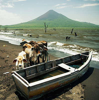 Nicaragua, Momotombito - p844m880735 von Markus Renner