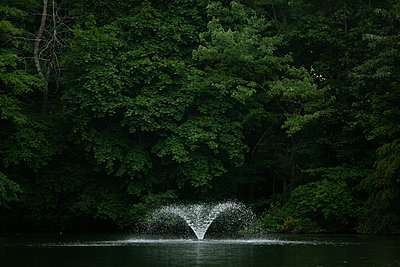 Water fountain on lake in front of trees - p919m2297277 by Beowulf Sheehan