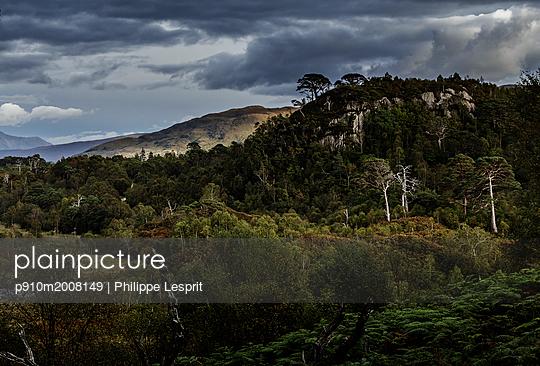 p910m2008149 von Philippe Lesprit