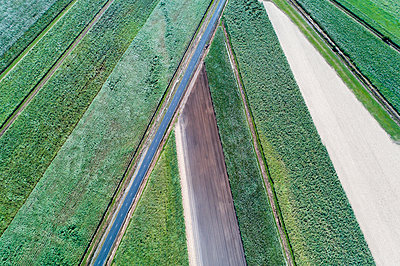 Aerial view of road and fields - p1427m1553666 by WalkerPod Images