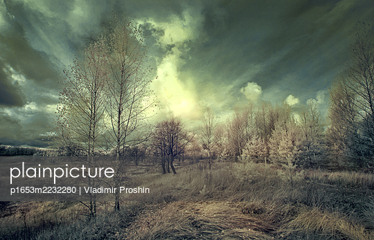 p1653m2232280 by Vladimir Proshin