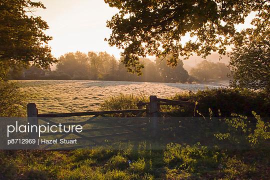 Early morning sun on frosty farmland at Fordcombe, Kent, England, United Kingdom, Europe - p8712969 by Hazel Stuart