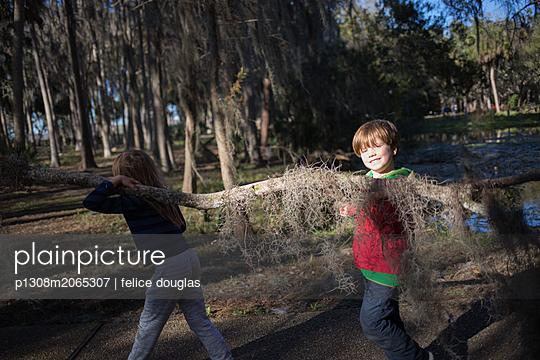 Kinder tragen Ast - p1308m2065307 von felice douglas