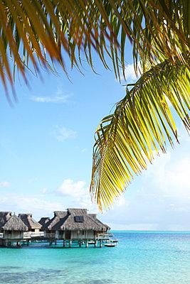 Vacation - p045m734834 by Jasmin Sander