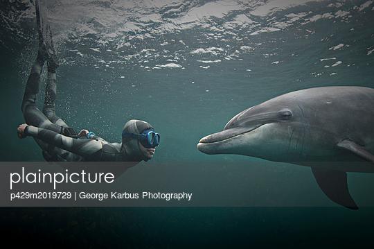 p429m2019729 von George Karbus Photography
