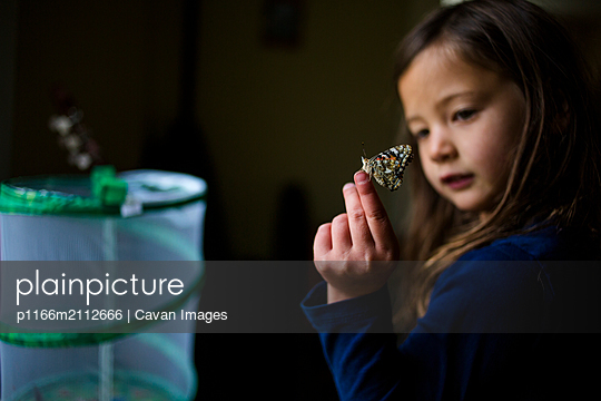 Close-up of girl holding butterfly while standing in darkroom at home - p1166m2112666 by Cavan Images