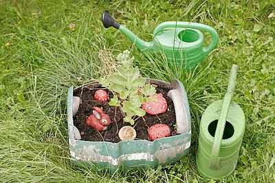 Pflanztrog - p1650481 von Andrea Schoenrock