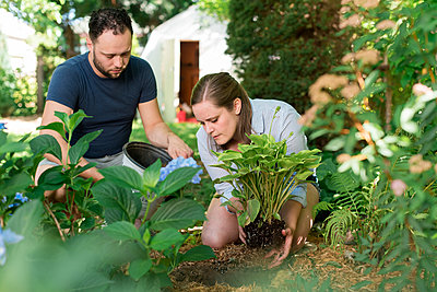Couple gardening in backyard - p429m2145747 by Sara Monika