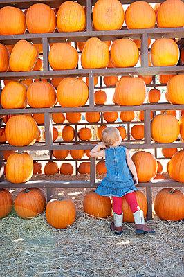 Female toddler looking at pumpkin harvest - p924m825992f by Jade Brookbank