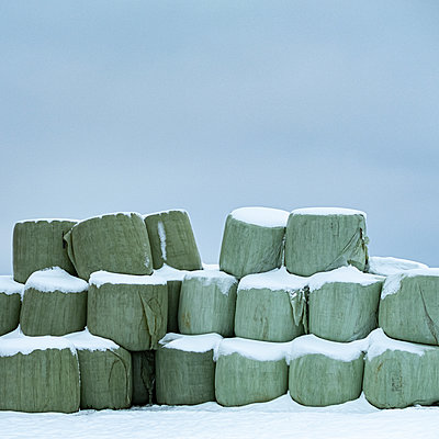 Snow-capped hay bales wrapped in plastic - p280m2172285 by victor s. brigola