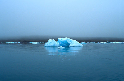 Iceberg in the sea - p4700028 by Ingrid Michel