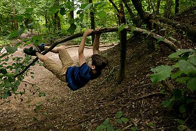 Junge hängt an einem Ast im Wald - p1212m1152986 von harry + lidy