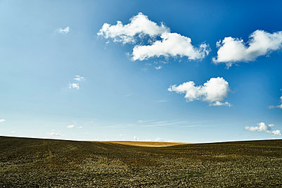 Field under blue sky with clouds - p1312m2279021 by Axel Killian