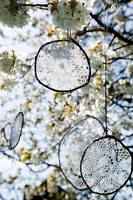 Dream catcher made of old crochet tablecloths hanging in blossoming cherry tree - p300m1023127f by Gianna Schade