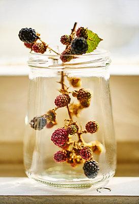 Berries - p968m2021359 by roberto pastrovicchio