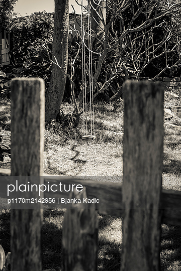 Swing - p1170m2142956 by Bjanka Kadic