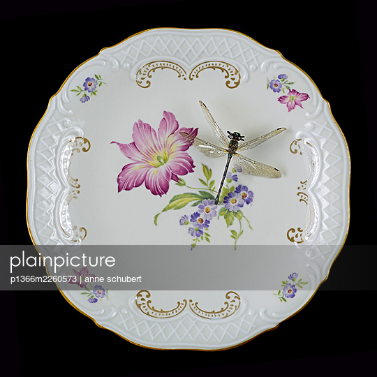 Big dragonfly on plate with floral pattern - p1366m2260573 by anne schubert