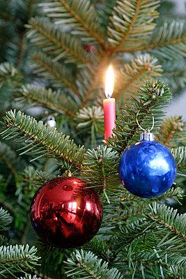 Brennende Kerze am Weihnachtsbaum - p2350738 von KuS