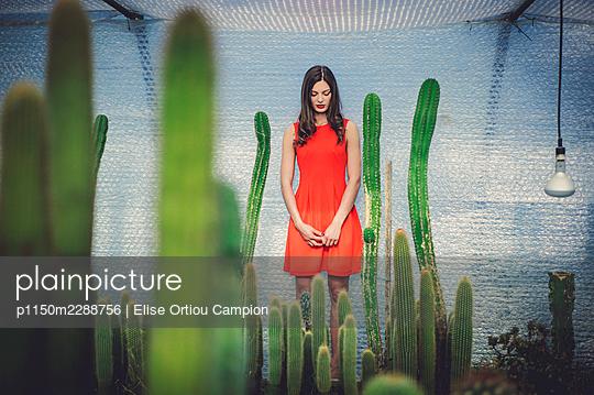 p1150m2288756 von Elise Ortiou Campion