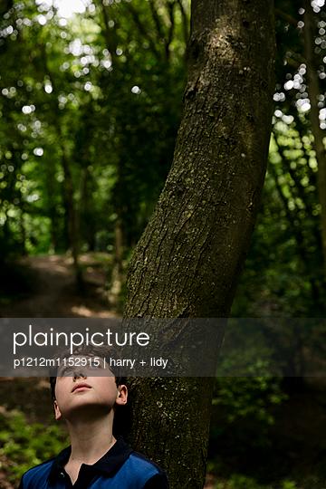 Junge lehnt an einem Baum im Wald - p1212m1152915 von harry + lidy