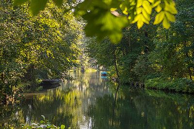 Germany, Spreewald, river Spree between Lehde and Luebbenau - p300m1191588 by Frank Röder