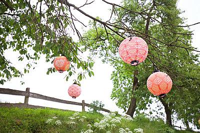 Lampions im Baum - p606m1573553 von Iris Friedrich