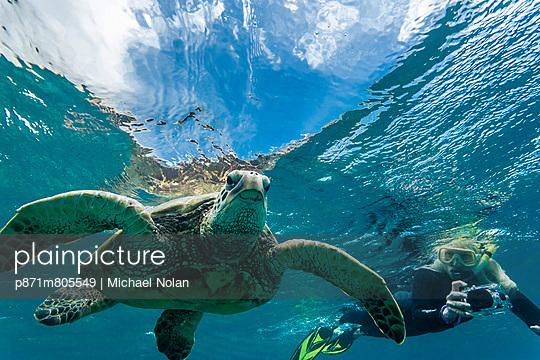 p871m805549 von Michael Nolan