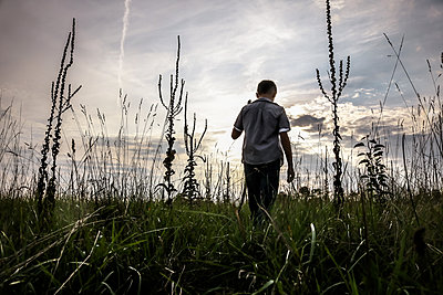 Boy in Field - p1019m1475132 by Stephen Carroll