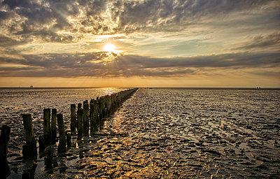 Germany, Dithmarschen, Friedrichskoog-Spitze, Sunset at the North Sea tidelands - p300m1115073f by Dirk Kittelberger