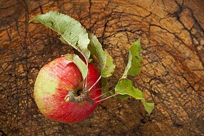Ripe apple lying on wooden surface - p300m2267242 by SandraBielmeier