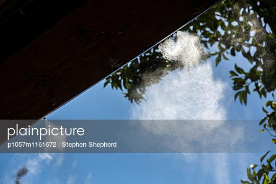Wasser zerstäubt - p1057m1161672 von Stephen Shepherd