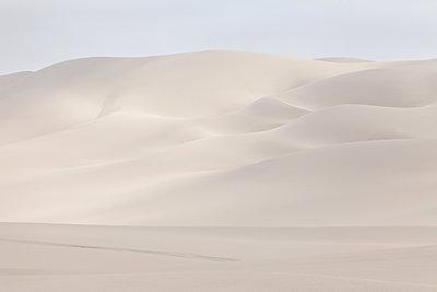 Dune 2 - p1333m1531830 by Gérard Staron