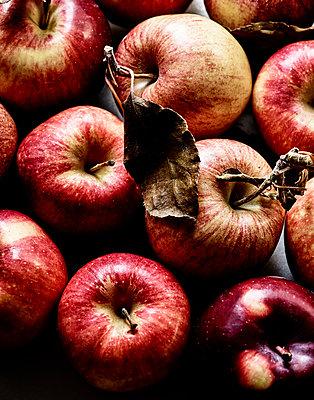 Frische Äpfel - p1397m2054521 von David Prince