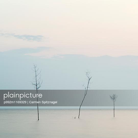 Wattenmeer - p992m1169329 von Carmen Spitznagel