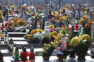 Graveyard in Poland - p3640241 by T. Hoenig