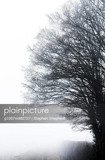 Cirencester - p1057m982727 von Stephen Shepherd